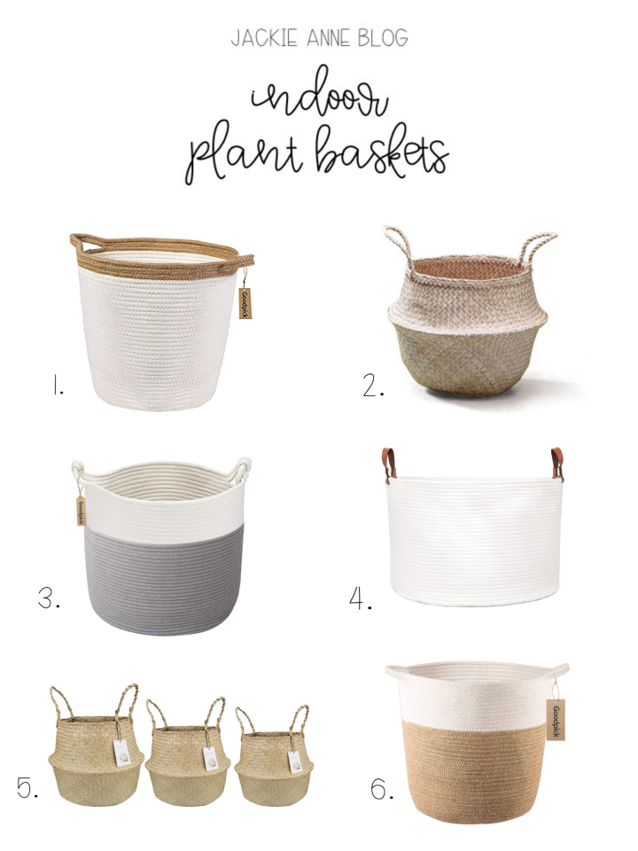 indoor plant basket.png